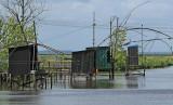 Cabane de pêche près de Trignac (sud Brière) - MK3_4676_DXO.jpg
