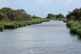 Canal du nord de la Grande Brière - MK3_4700_DXO.jpg