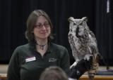 International Festival of Owls 2011