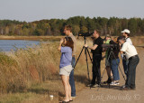 Separate Fall 2011 gallery: Crex Meadows Birding Trip - RRF (Raptor Research Foundation) Conference