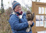 Margie with the juvenile rufous morph Red-tailed Hawk