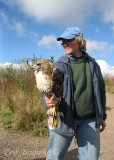 Gail with a borealis adult Red-tailed Hawk