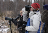 Separate Winter 2012 gallery: A day with Birdchick & Friends in Sax-Zim Bog