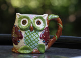 Prepping for the early morning... An owl mug that was given to me for my birthday last week