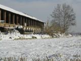 A farm near Milan, Italy winter 2005