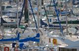 Brest été 2011 - Port du Moulin Blanc