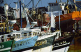 Le Guilivinec - Port de pêche