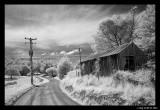 Shearers hut 2