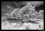 Shearers hut