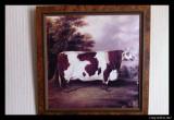 Rectangular Hamilton cow