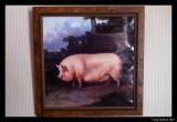 Rectangular Hamilton pig