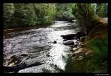 Franklin River