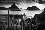 Fernando de Noronha Island on black and white fine art prints