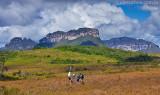 Trekking-Vale-do-Pati-primeiro-dia- Chapada-Diamantina-Bahia, 0918.jpg