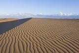 Coro Desert
