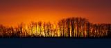 sunset 022511IMG_6144