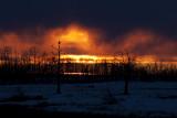 sunset 123011IMG_0964