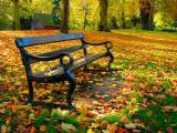 Kings Lynn in Autumn