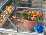 Allotment Produce