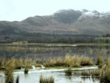 Winter floods on the Crom Mhin marsh