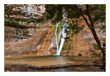 Calf Creek,  UT