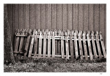 Discarded picket fence