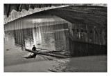 Sculling the Arno