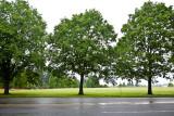 Bikin' In The Rain, June 18, '11