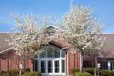 Spring has Sprung! Apr 7 2012