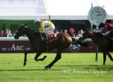 Prix de l'Arc de Triomphe 2011-10-02 (Paris - Longchamp)