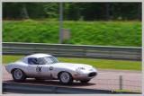 61 - Jaguar
