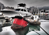 Winter morning in the Typhoon Shelter