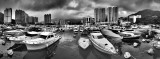 a Panoramic view of the Typhoon Shelter