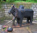 Statue, Dhungri