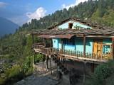 House, Naggar