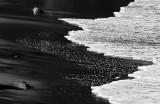 Black sand beach, Madeira, Portugal