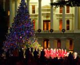 Christmas Tree Lighting Ceremony 2011