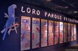 Loro Parque Foundation