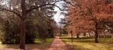 Castlemaine gardens in Victoria Australia