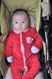 2011 - Austin Phan - Two Months Old