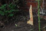 Ragna's grave.jpg