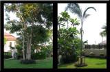 HUA HIN HOUSE 2011