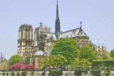 Notre Dame Paint