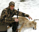 chasse aux coyotes