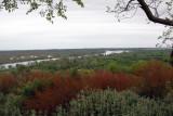 Reka Bojana - River Bojana