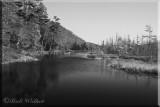 Oxbow Lake Outlet
