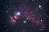 Horsehead and Flame Nebulas.jpg