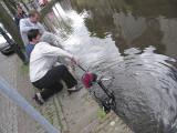 Bike in canal!