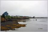 West Arichat ~ Cape Breton Island