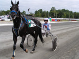 Harness Racing at the County Fair